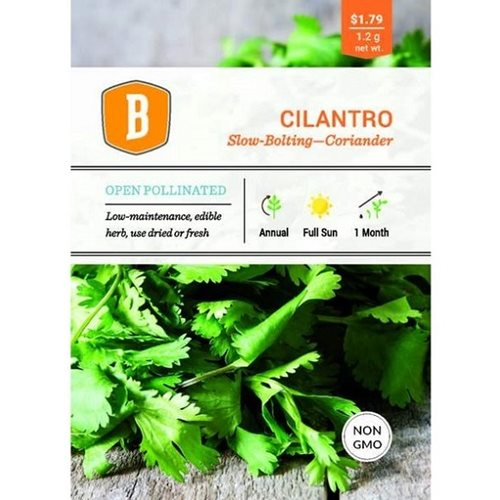 Bentley Cilantro - Slow Bolting Coriander Seed
