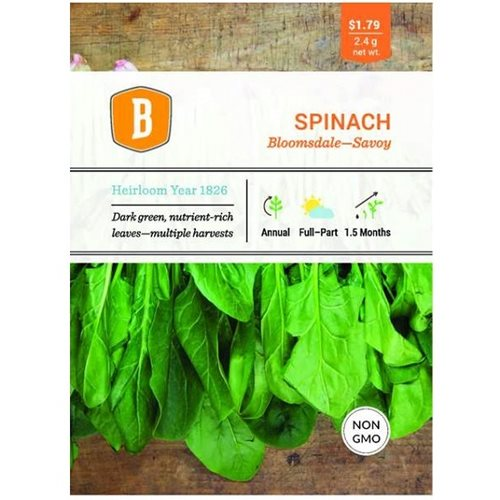 Bentley Spinach - Bloomsdale seed