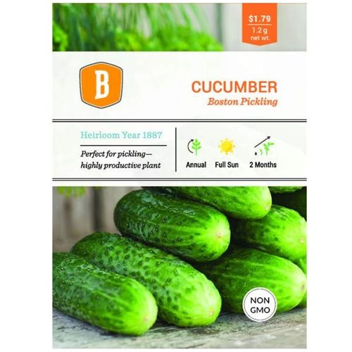 Bentey Cucumber - Boston Pickling Seed