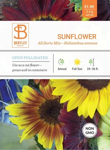 Bentley Sunflower All Sorts Mix Helianthus Annuus Seed